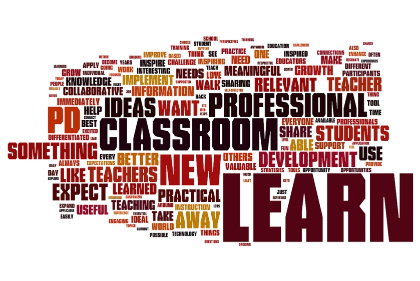 Word Cloud about Professional Development