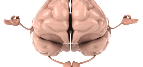 A brain in a thoughtful pose. Kinda meta, I guess.