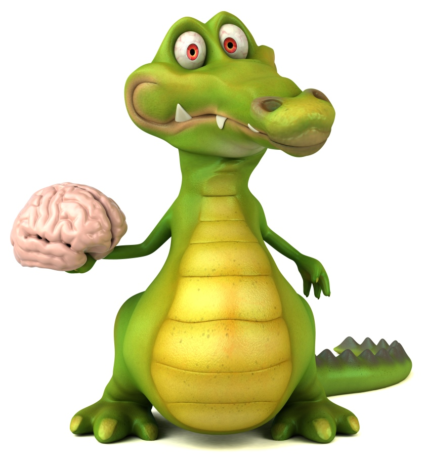 "Fun crocodile holds CTEI brain evoking the rhyme ""See you later alligator"""
